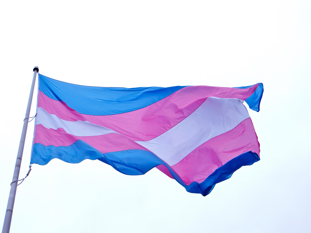 TERF War: the Labour Party must support trans justice