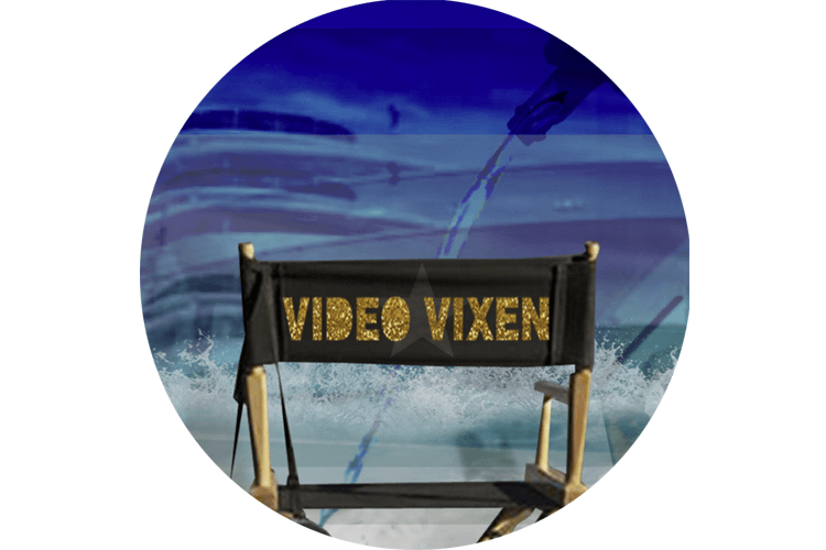 Reflecting on the role of the 'video vixen' in music videos