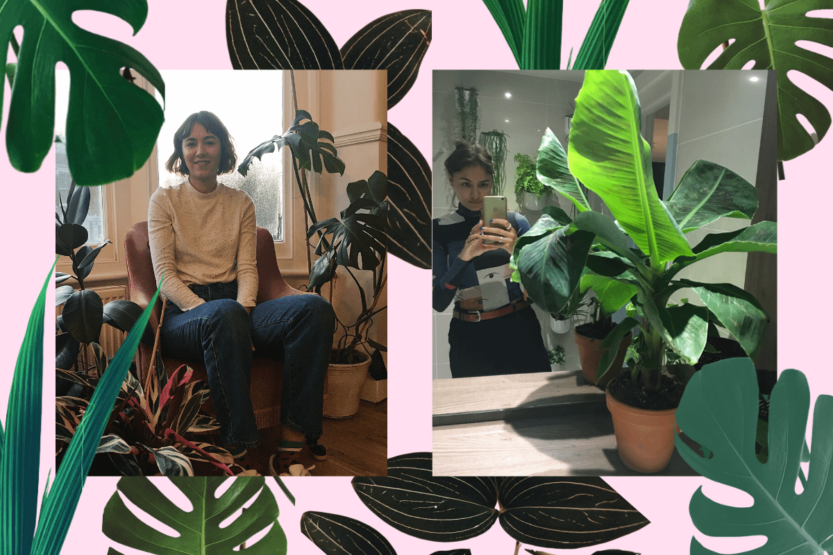 Putting down roots: why I started a gardening and plants club for women of colour