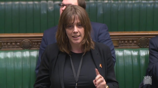 As we rally to support Jess Phillips, let's not forget her 'lies' about Diane Abbott